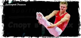 4 «золота» ЕИ-2015 России принёс батут